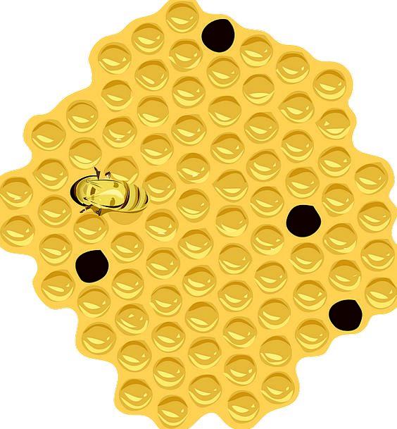 Honeycomb Drink Food Hive Store Bee Beeswax Honey