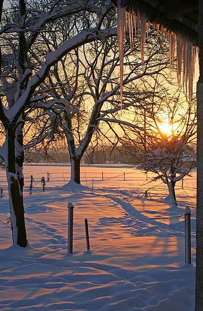 Sunrise Dawn Landscapes Snowflake Nature Icicle St