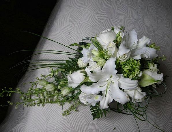 Flowers Plants Bridal White Snowy Wedding