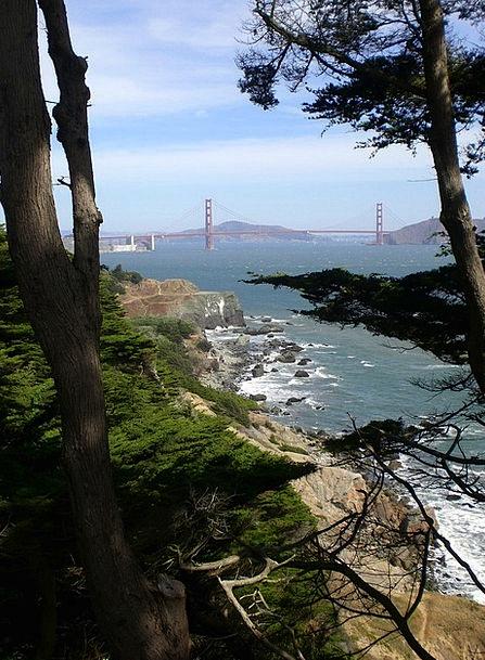 View Opinion San Francisco Golden Gate