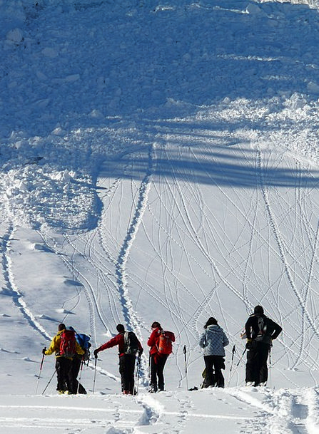 Ski Tour Fall Loose Snow Avalanches Avalanche Moun
