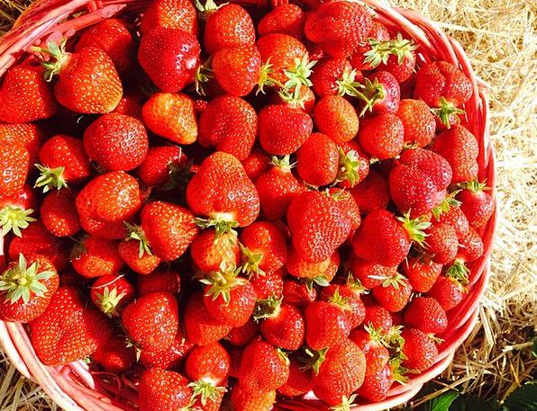 Strawberries Landscapes Bloodshot Nature Sweet Sug