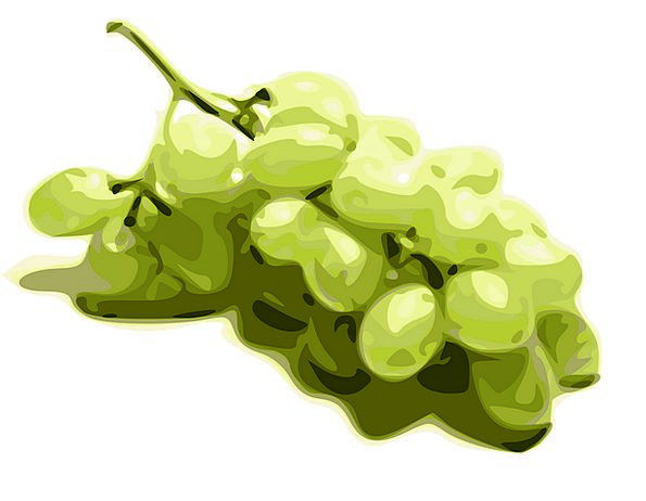 Grapes Lime Fruits Ovaries Green Free Vector Graph