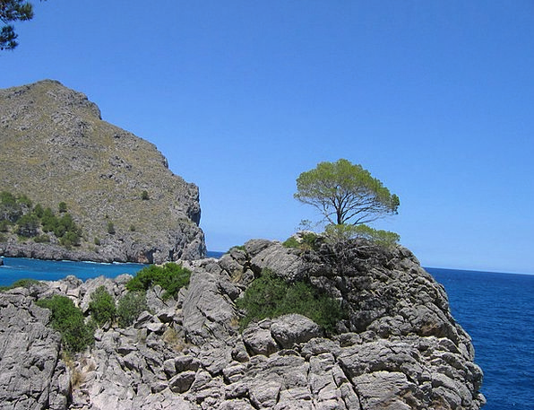 Mallorca Reserved Rock Pillar Booked Sea Marine