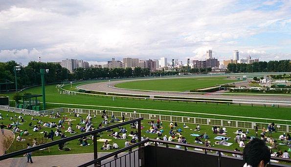 Racecourse Track Horse Mount Horse Racing Gambling