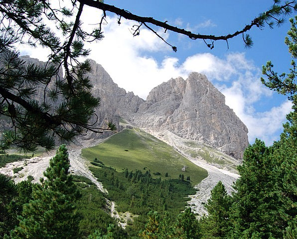 Dolomites Plants Mountains Crags Trees Branch Divi