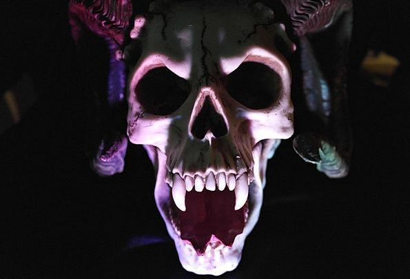 Skull Mind Expert Monster Huge Demon Skeleton Shad