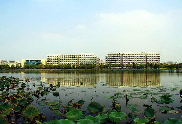 High-Rise Building Buildings Architecture Campus S