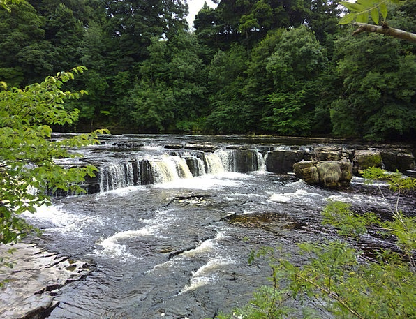 Aysgarth Landscapes Cascade Nature Yorkshire Dales