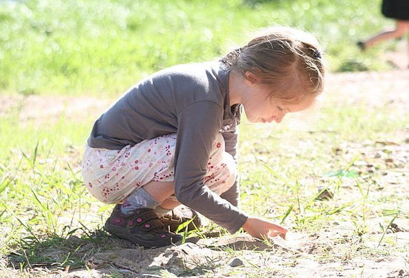 Child Youngster Lassie Game Willing Girl Concentra