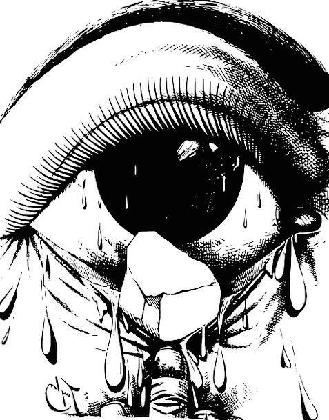 Eye Judgment Nuisance Cry Call Irritant Tear Slit