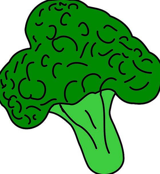 Broccoli Drink Food Healthy Food Vegetable Vegetar