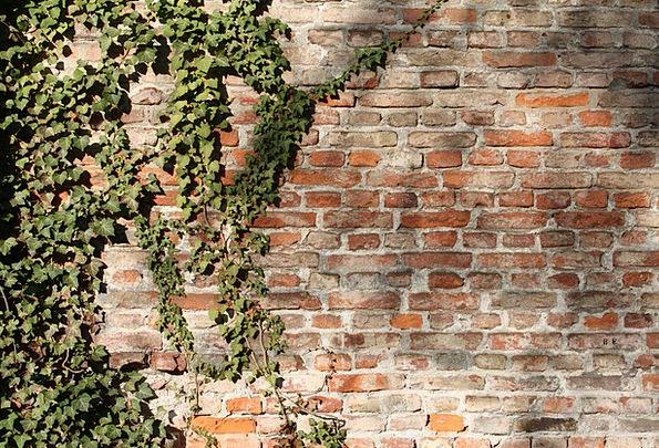 Brick Wall Elements Wall Partition Bricks Bricked