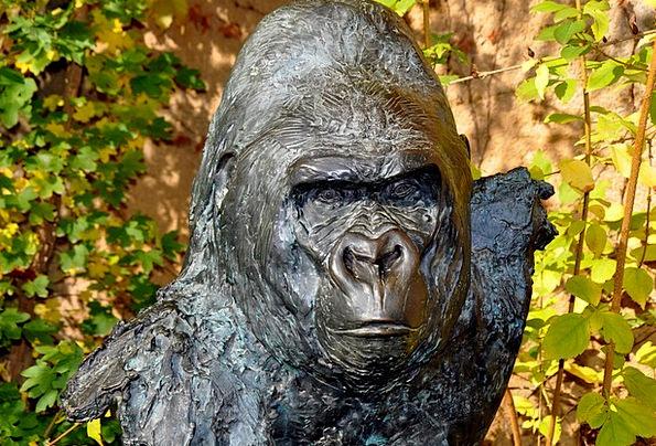 Gorilla Brute Wolfgang Weber Bronze Sculpture Matz