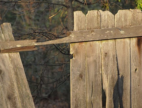 Fence Barrier Timber Wooden Wood Planks Boards Col