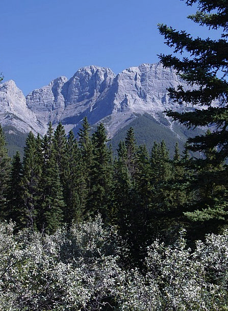Canmore Landscapes Nature Canada Alberta Mountains