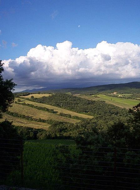 Sky Blue Landscapes Movement Nature Vineyard Winer