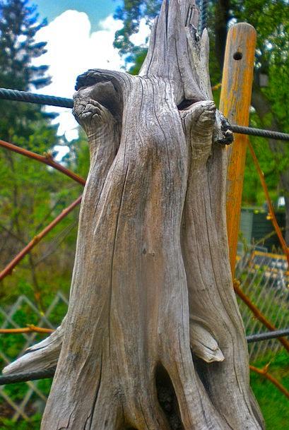 Tree Figure Landscapes Nature Forest Woodland Natu
