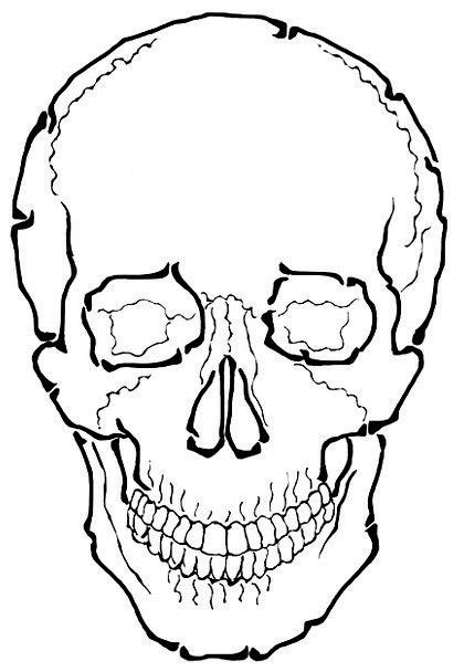 Skull Mind Demise Skeleton Minimum Death