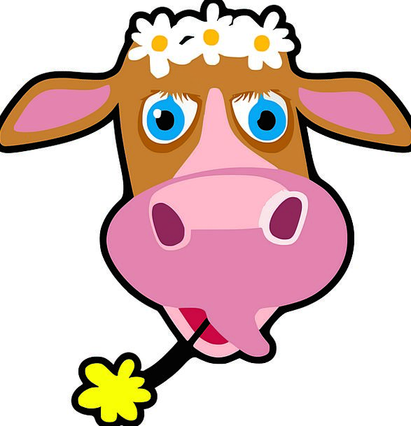 Cow Intimidate Expression Flowers Plants Face Anim