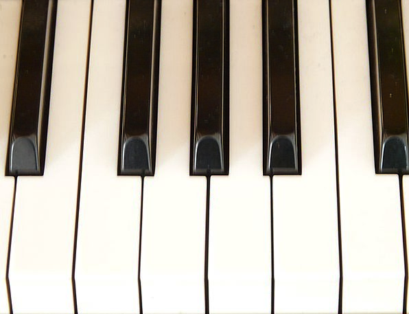 Piano Keys Piano Keyboard Piano Keyboard White Sno