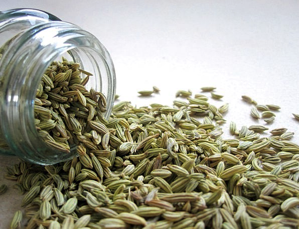 Fennel Kernels Spice Interest Seeds Spill Tumble J