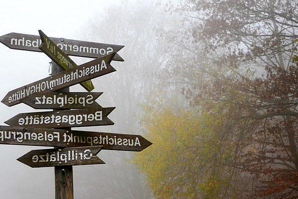 Fog Mist Almanac Decisions Choices Directory Foggy