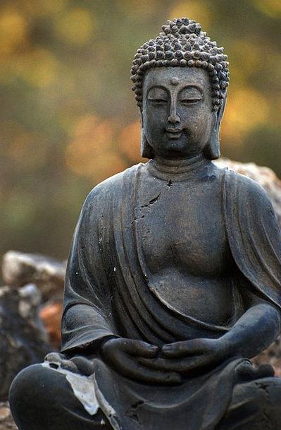 Zen Reflection Likeness Buddha Buddhism Brightness