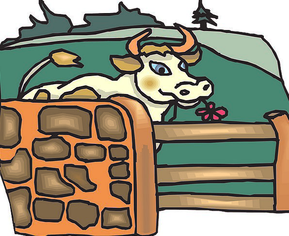 Cow Intimidate Barrier Grazing Browsing Fence Milk