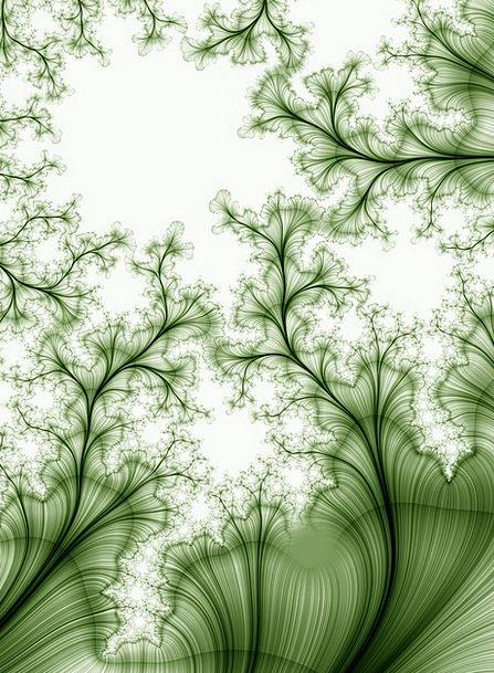 Abstract Nonconcrete Line Streak Fractal Flowers P