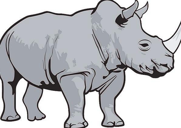Rhino Siren Animal Physical Horn Gray Wild Rough H