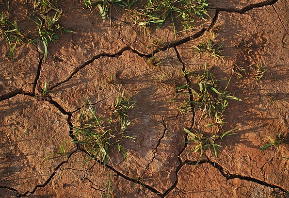 Soil Earth Terrestrial Dry Thirsty Land Cracked Fr