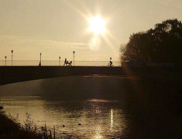River Stream Bond Web Mesh Bridge Water Aquatic Su