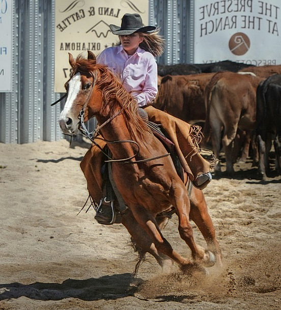 Cowgirl Mount Cowboy Unreliable Horse Girl Attract