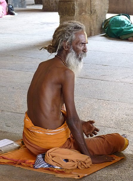Sadhu Monk Hinduism Holy Man India
