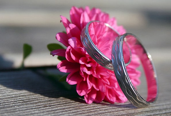 Engagement Rings Landscapes Floret Nature Wedding