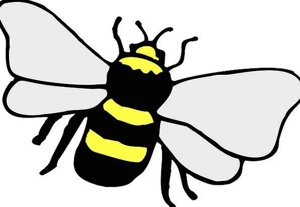 Bee Bug Stripes Strips Insect Honeybee Yellow Crea