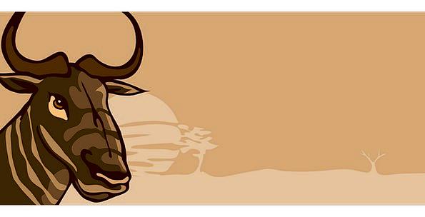 Wildebeest Sirens Animal Physical Horns Savannah W