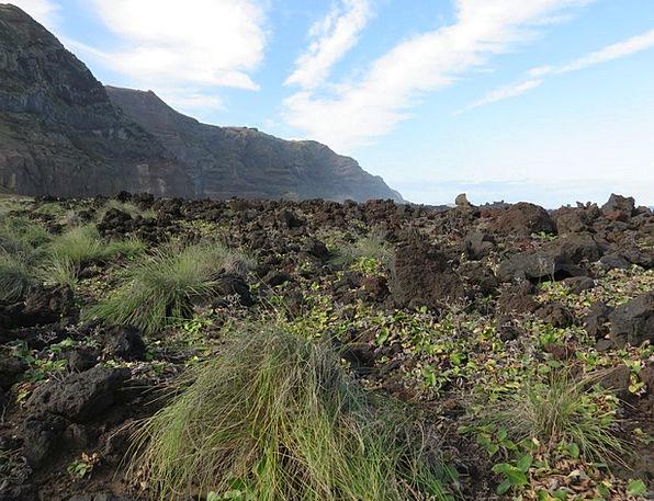 Rock Pillar Landscapes Nature Flow Movement Volcan