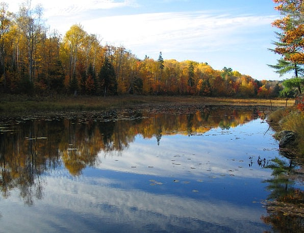 Lake Freshwater Landscapes Reduction Nature Colors