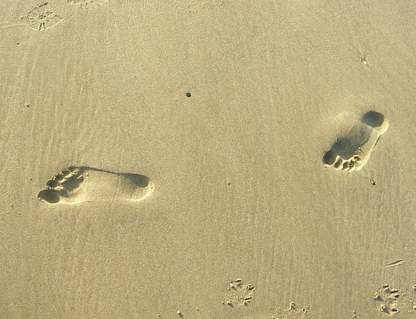 Feet Bases Landscapes Pattern Nature Footprint Foo
