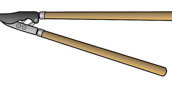 Trimmer Slimmer Craft Instrument Industry Garden P