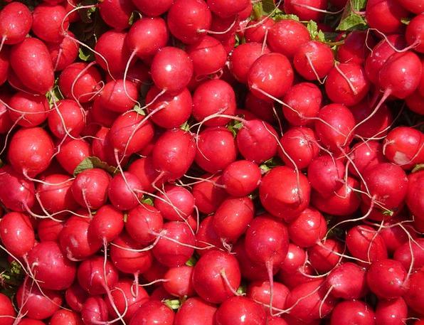 Radishes Drink Potatoes Food Red Bloodshot Vegetab