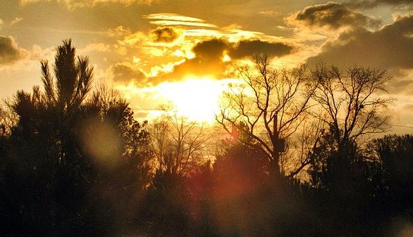 Sunset Sundown Vacation Carroty Travel Sky Blue Or