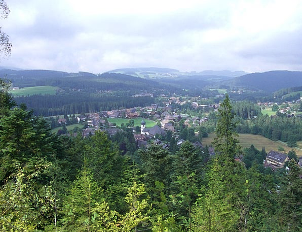 Hinterzarten Outlook Viewpoint Black Forest Firs F