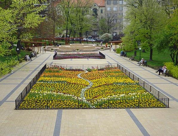 Spring Coil Plants Grove Copse Flowers Park Common