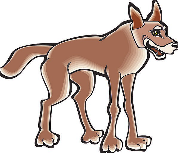 Body Form Physical Tail End Animal Coyote Free Vec