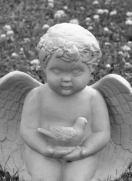 Cherub Angel Bird Fowl Ornament Stone Pebble Decor
