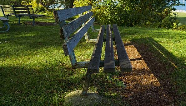 Bench Seat Sunshine Grass Lawn Sunlight Autumn Fal