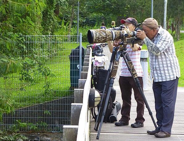 Photographers Paparazzi Taking pictures Camera Pho
